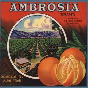 Ambrosia Brand - Upland, California - Citrus Crate Label by Lantern Press