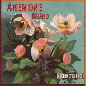 Anemone Brand - California - Citrus Crate Label by Lantern Press