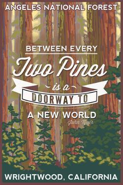 Angeles National Forest - Wrightwood, California - John Muir by Lantern Press