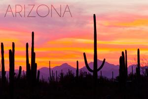 Arizona - Sunset and Cactus by Lantern Press