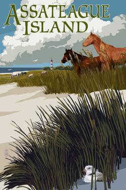 Assateague Island - Horses and Dunes by Lantern Press