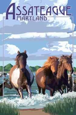 Assateague, Maryland - Pony Swim by Lantern Press