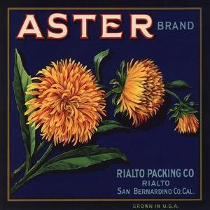 Aster Brand - San Bernardino, California - Citrus Crate Label by Lantern Press