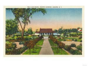 Auburn, New York - Exterior View of Hoopes Gardens Club House by Lantern Press