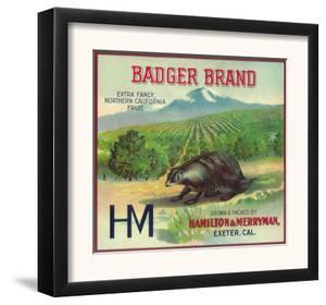 Badger Orange Label - Exeter, CA by Lantern Press