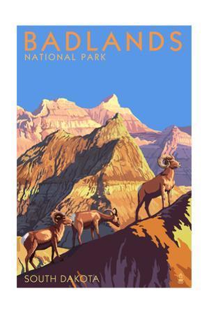Badlands National Park, South Dakota - Bighorn Sheep