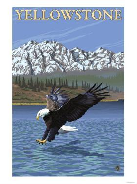 Bald Eagle Diving, Yellowstone National Park by Lantern Press