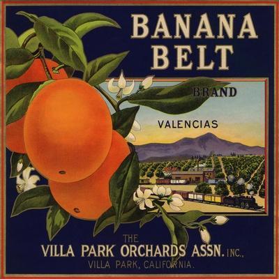 Banana Belt Brand - Villa Park, California - Citrus Crate Label
