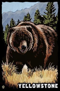 Bear Family - Grizzly Bear Scratchboard by Lantern Press