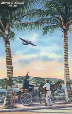 Bermuda - Airplane Arriving on the Island by Lantern Press