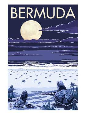 Bermuda - Turtles Hatching by Lantern Press