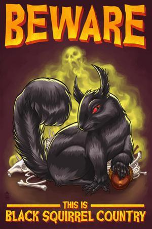 Beware this is Black Squirrel Country by Lantern Press