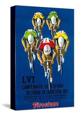 Bicycle Race Promotion by Lantern Press
