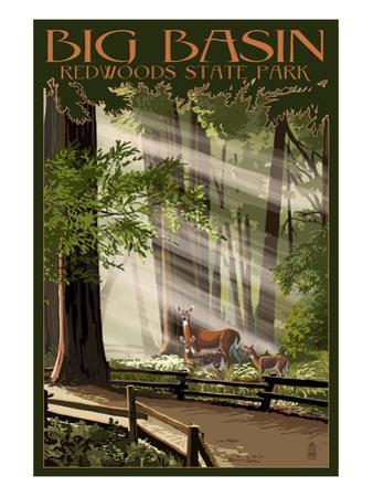 Big Basin Redwoods State Park - Deer and Fawns by Lantern Press