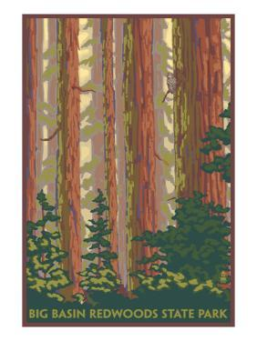 Big Basin Redwoods State Park - Forest View by Lantern Press
