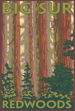 Big Sur, California - Redwoods by Lantern Press