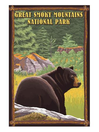 Black Bear in Forest - Great Smoky Mountain National Park, Tennessee by Lantern Press