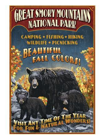 Black Bears - Great Smoky Mountain National Park, Tennessee by Lantern Press
