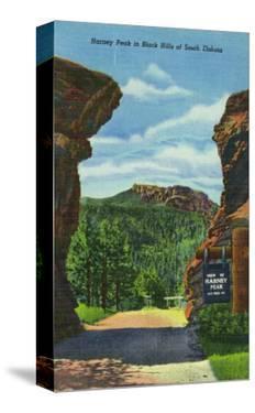 Black Hills, South Dakota, View of Harney Peak by Lantern Press