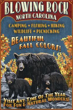 Blowing Rock, North Carolina - Black Bear Family Fall Colors by Lantern Press