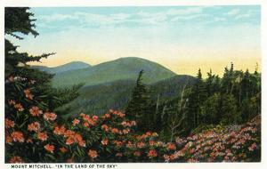 Blue Ridge Mountains, North Carolina - Mount Mitchelll Scene by Lantern Press