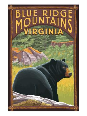 Blue Ridge Mountains, Virginia - Bear in Forest by Lantern Press
