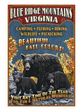 Blue Ridge Mountains, Virginia - Black Bear Family by Lantern Press