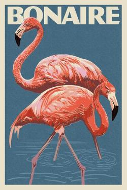 Bonaire, Dutch Caribbean - Flamingo by Lantern Press