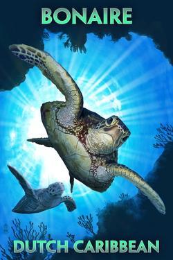 Bonaire, Dutch Caribbean - Sea Turtle Diving by Lantern Press