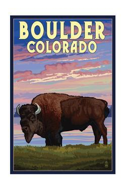 Boulder, Colorado - Bison and Sunset by Lantern Press