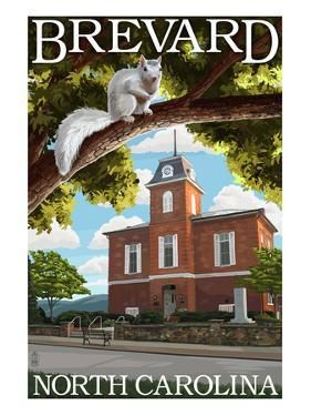 Brevard, North Carolina - Courthouse and White Squirrel by Lantern Press