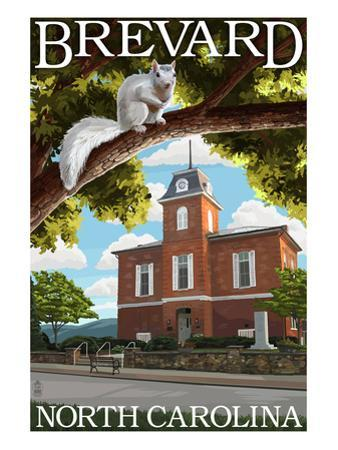 Brevard, North Carolina - Courthouse and White Squirrel