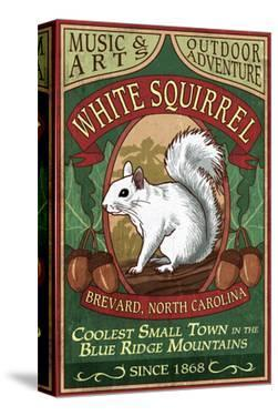 Brevard, North Carolina - White Squirrel by Lantern Press