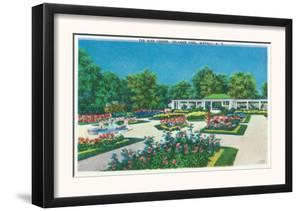 Buffalo, New York - Delaware Park Rose Garden View by Lantern Press