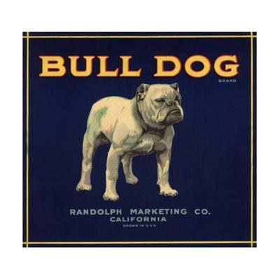 Bull Dog Head - California - Citrus Crate Label by Lantern Press