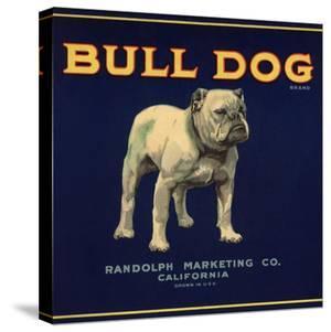 Bull Dog Head - California - Citrus Crate Label by Lantern Press