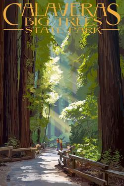 Calaveras Big Trees State Park - Pathway in Trees by Lantern Press