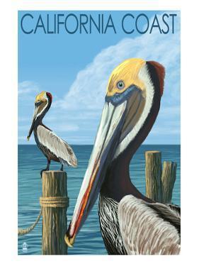 California Coast - Pelicans by Lantern Press