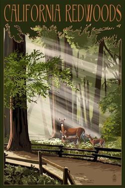 California - Deer and Fawns in Redwoods by Lantern Press