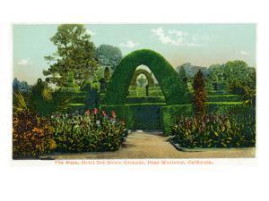 California - Hotel Del Monte View of the Maze Near Monterey by Lantern Press