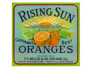 California, Rising Sun Brand Citrus Label by Lantern Press