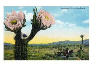 California - View of a Flowering Cactus by Lantern Press