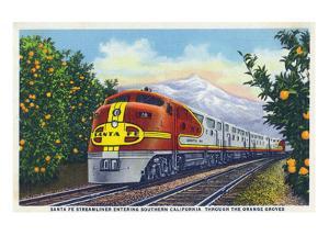 California - View of a Santa Fe Train Passing Through Orange Groves by Lantern Press