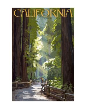 California by Lantern Press