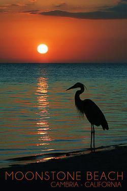 Cambria, California - Moonstone Beach and Heron by Lantern Press