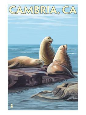 Cambria, California - Sea Lions, c.2009 by Lantern Press