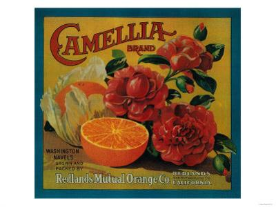 Camellia Orange Label - Redlands, CA by Lantern Press