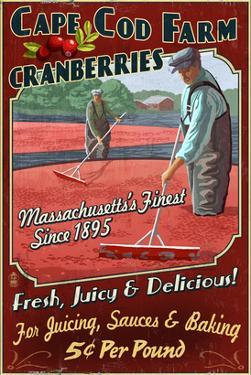 Cape Cod, Massachusetts - Cranberry by Lantern Press