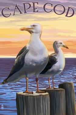Cape Cod, Massachusetts - Seagulls by Lantern Press