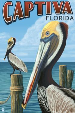 Captiva, Florida - Brown Pelican by Lantern Press